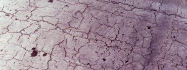 Střešní plášť z oxidovaných asfaltových pásů